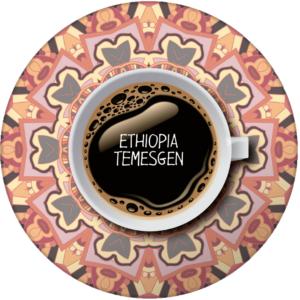 Etiopía temesgen
